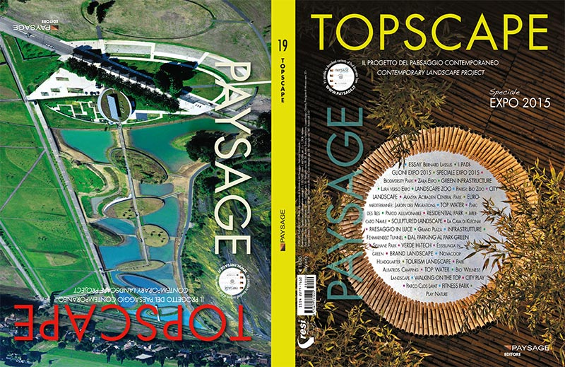 TOPSCAPE-19