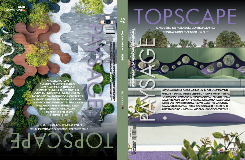 TOPSCAPE-42